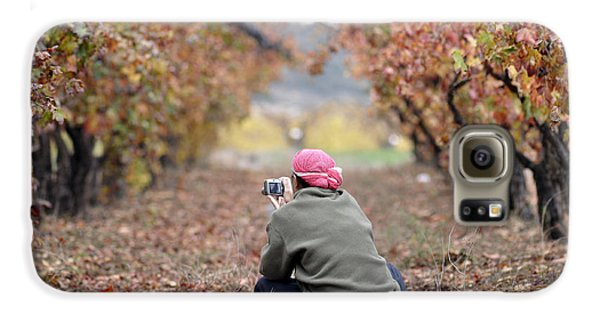 Galaxy S6 Case featuring the photograph Autumn At Lachish Vineyards 1 by Dubi Roman