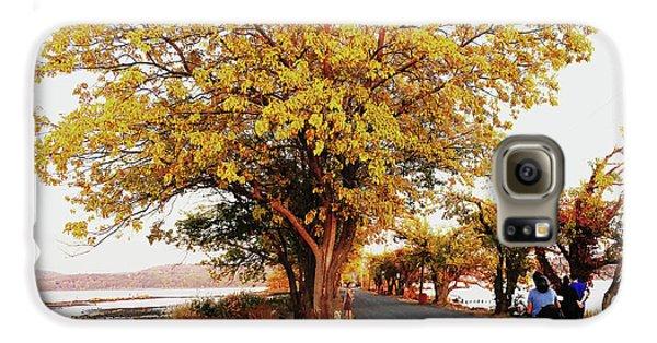 Autumn Causeway Galaxy S6 Case