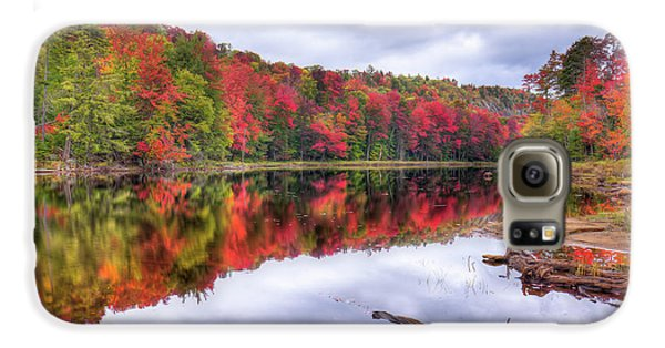 Galaxy S6 Case featuring the photograph Autumn Color At The Pond by David Patterson