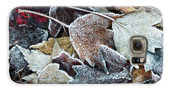 Autumn Ends, Winter Begins 1 Galaxy S6 Case