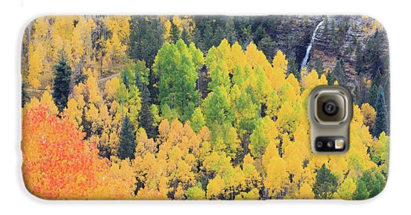 Autumn Glory Galaxy S6 Case by David Chandler