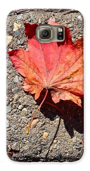 Autumn Is Here Galaxy S6 Case
