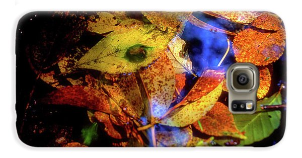 Autumn Leaf Galaxy S6 Case by Tatsuya Atarashi