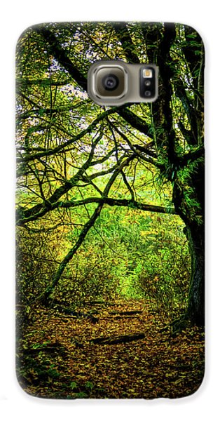 Galaxy S6 Case featuring the photograph Autumn Light by David Patterson