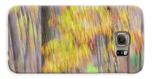 Autumn Splendor Galaxy S6 Case