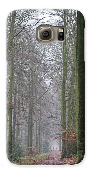 Autumn Woodland Avenue Galaxy S6 Case by Gary Eason