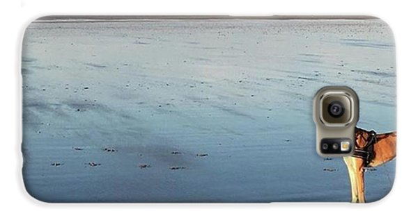 Ava's Last Walk On Brancaster Beach Galaxy S6 Case by John Edwards