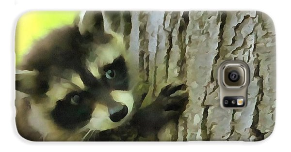 Baby Raccoon In A Tree Galaxy S6 Case