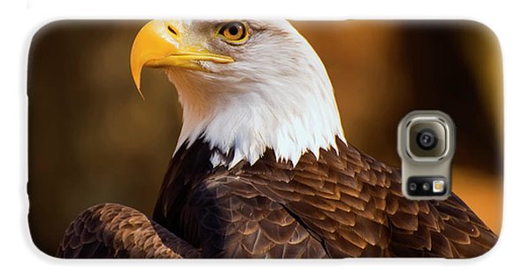 Bald Eagle 2 Galaxy S6 Case