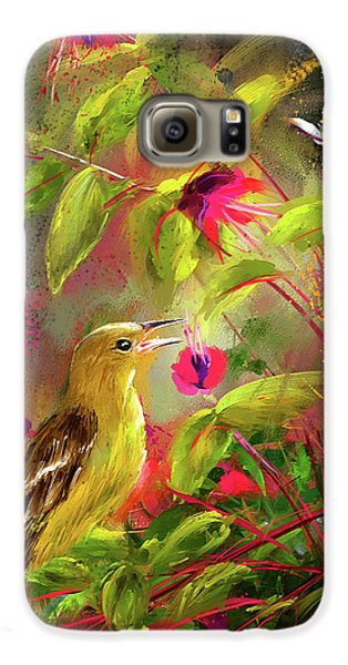 Baltimore Oriole Art- Baltimore Female Oriole Art Galaxy S6 Case