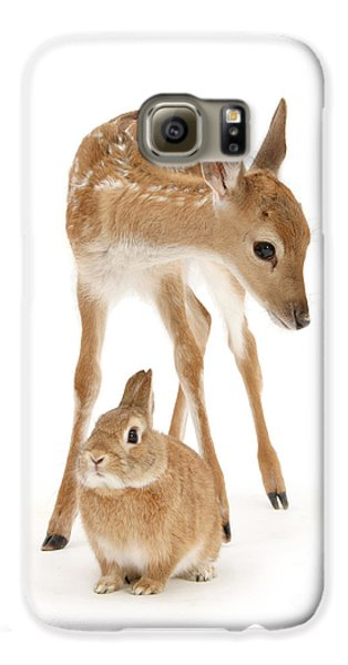 Bambi And Thumper Galaxy S6 Case