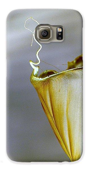 Banana Leaf Galaxy S6 Case