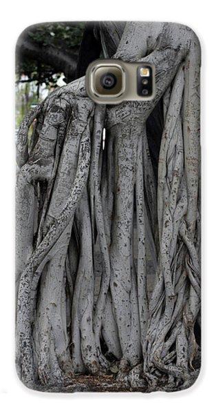 Banyan Tree, Maui Galaxy S6 Case