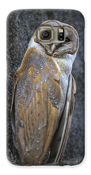 Barn Owl Galaxy S6 Case