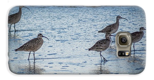 Beach Birds Galaxy S6 Case