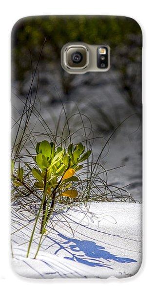 Mangrove Galaxy S6 Case - Beach Life by Marvin Spates