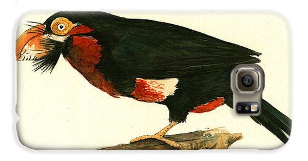 Toucan Galaxy S6 Case - Bearded Barbet by Juan Bosco