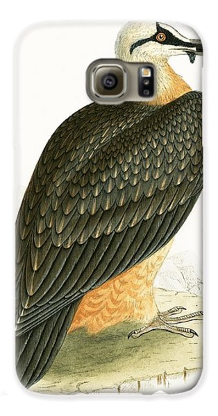 Bearded Vulture Galaxy S6 Case by English School