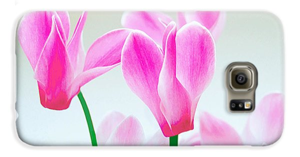 Beautiful Pink Galaxy S6 Case