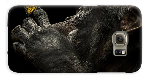 Ape Galaxy S6 Case - Beauty And The Beast by Paul Neville