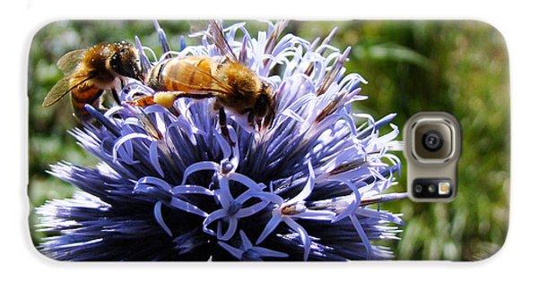 Bee Circles Galaxy S6 Case
