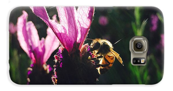Bee Illuminated Galaxy S6 Case