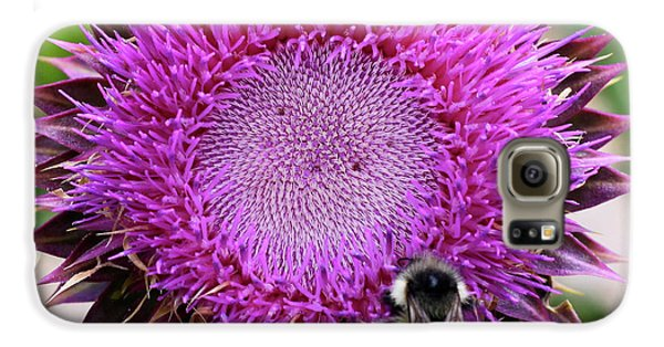 Bee On Thistle Galaxy S6 Case