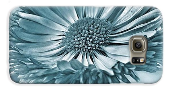 Summer Galaxy S6 Case - Bellis In Cyan  #flower #flowers by John Edwards