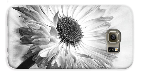 Summer Galaxy S6 Case - Bellis In Mono  #flower #flowers by John Edwards