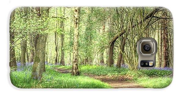 Bentley Woods, Warwickshire #landscape Galaxy S6 Case
