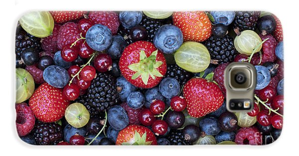 Berried  Galaxy S6 Case by Tim Gainey