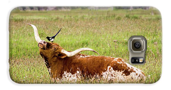 Best Friends - Texas Longhorn Magpie Galaxy S6 Case by TL Mair