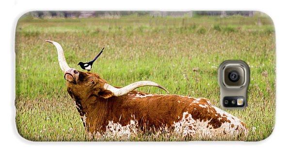 Best Friends - Texas Longhorn Magpie Galaxy S6 Case by TL Mair