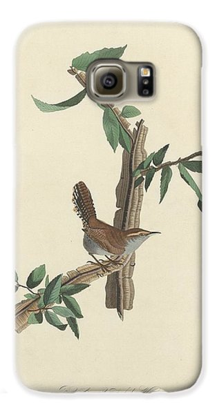 Bewick's Long-tailed Wren Galaxy S6 Case by Rob Dreyer