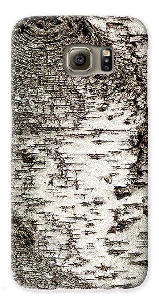 Birch Tree Bark Galaxy S6 Case by Christina Rollo