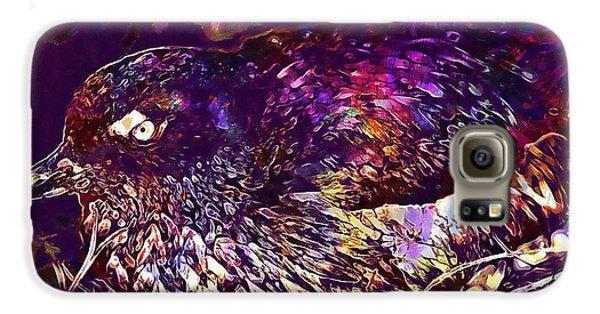 Bird Cassins Auklet Crested Birds  Galaxy S6 Case