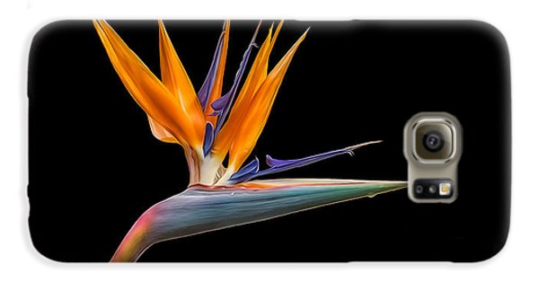 Bird Of Paradise Flower On Black Galaxy S6 Case