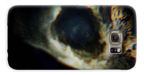 Bird's Eye Galaxy S6 Case