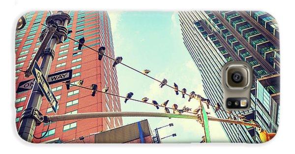 Birds In New York City Galaxy S6 Case