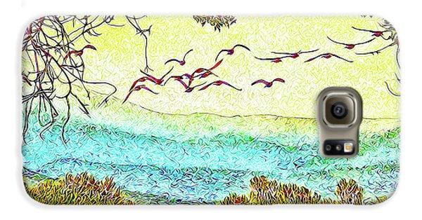 Birds Over Horizon - Boulder County Colorado Galaxy S6 Case by Joel Bruce Wallach