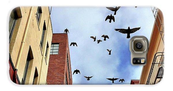 Galaxy S6 Case - Birds Overhead by Julie Gebhardt