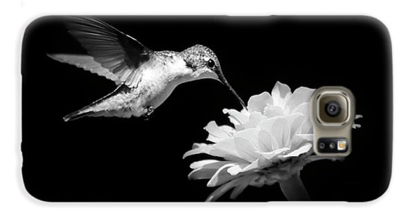 Galaxy S6 Case featuring the photograph Black And White Hummingbird And Flower by Christina Rollo