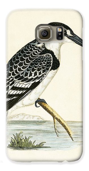 Black And White Kingfisher Galaxy S6 Case