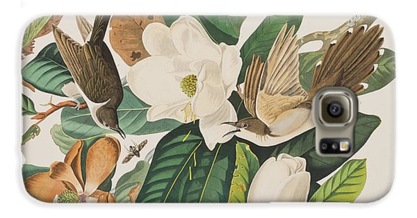 Cuckoo Galaxy S6 Case - Black Billed Cuckoo by John James Audubon