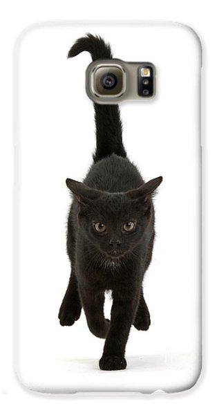 Black Cat On The Run Galaxy S6 Case