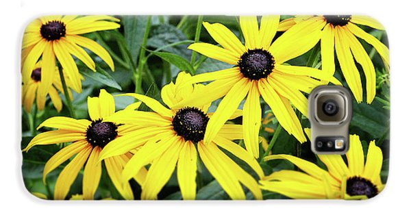 Daisy Galaxy S6 Case - Black Eyed Susans- Fine Art Photograph By Linda Woods by Linda Woods