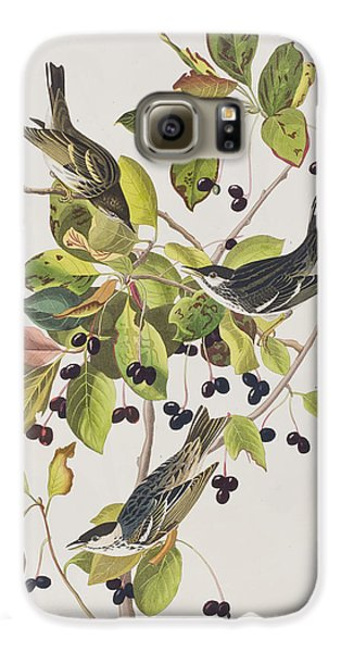 Black Poll Warbler Galaxy S6 Case by John James Audubon