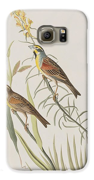 Black-throated Bunting Galaxy S6 Case