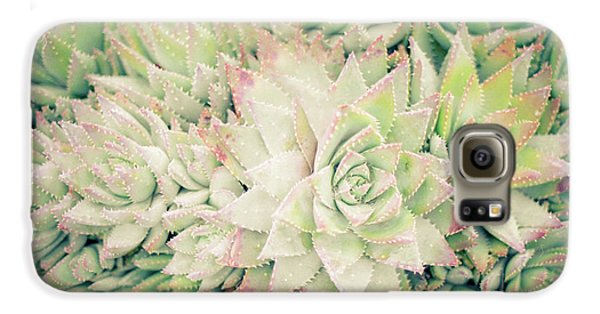 Galaxy S6 Case featuring the photograph Blanket Of Succulents by Ana V Ramirez