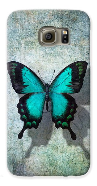Blue Butterfly Resting Galaxy S6 Case by Garry Gay